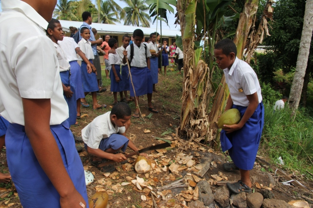 The team was treated with fresh coconuts daily